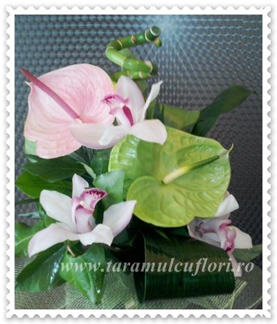 Buchete de flori.0411